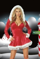 4552 Dreamgirl Costume, Sleigh Belle Costume, Zipper front crushed st