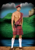 5084 Dreamgirl Costume, Hot Scottie, Plaid pleated kilt with attached