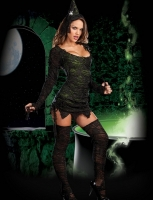 7473 Dreamgirl Costume, Wicked Wonderful. Long sleeve scoop neck knit