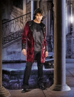 7602 Dreamgirl Costume, Fangtastic Vampire Velveteen jacket with cont