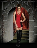 7635 Dreamgirl Costume, Appetite for Destruction Knit dress with X fr
