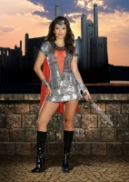 8125 Dreamgirl Costume, Shimmering Knight Shimmering sequin dress has