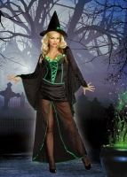 8199 Dreamgirl Costume, Wicked Me Velvet and chiffon long dress with