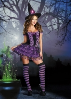 8200 Dreamgirl Costume, Spellbound Velvet dress with spider lace ruff