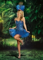 8222 Dreamgirl Costume, Peacock Envy Corset styled dress with feather