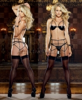 7953 Dreamgirl Lingerie, Stretch coated microfiber spandex garter set