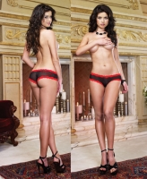 1387 Dreamgirl, Stretch mesh with spandex cheeky panty with  stretch